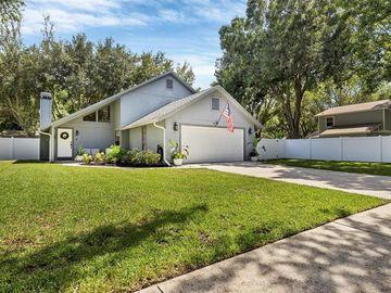 3710 VILLAGE ESTATES PLACE, Tampa, FL, 33618,