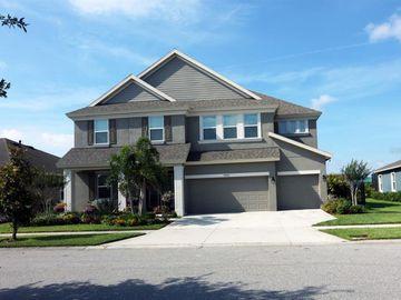 6406 TIDELINE DRIVE, Apollo Beach, FL, 33572,