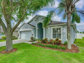 4151 MEDBURY DRIVE, Wesley Chapel, FL, 33543,