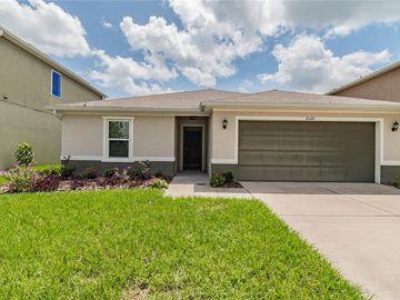11520 SOUTHERN CREEK DRIVE, Gibsonton, FL, 33534,