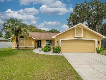 2209 PINTA AVENUE, Spring Hill, FL, 34609,