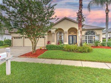 1436 DEERBOURNE DRIVE, Wesley Chapel, FL, 33543,