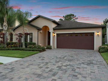 11003 TORTOLA ISLE WAY, Tampa, FL, 33647,