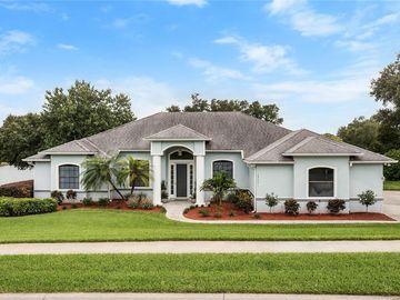 15041 GREEN VALLEY BOULEVARD, Clermont, FL, 34711,