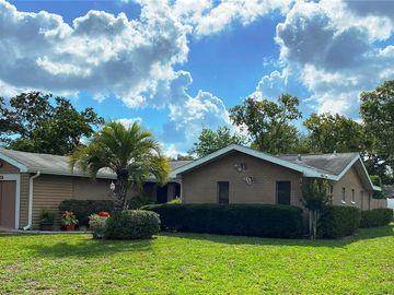 1308 MEDFORD AVENUE, Spring Hill, FL, 34606,
