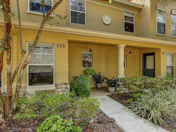 228 PENMARK STONE PLACE, Valrico, FL, 33594,