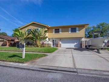 15609 BEAR CREEK DRIVE, Tampa, FL, 33624,