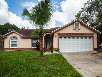 12028 VERMILLION WAY, Riverview, FL, 33569,