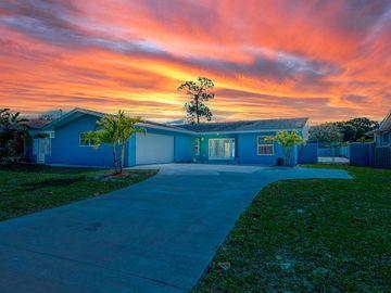965 S FLORIDA AVENUE, Tarpon Springs, FL, 34689,