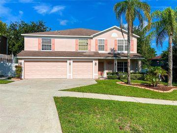 490 SOUTHRIDGE ROAD, Clermont, FL, 34711,