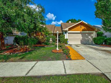 8704 MCADAM PLACE, Tampa, FL, 33634,
