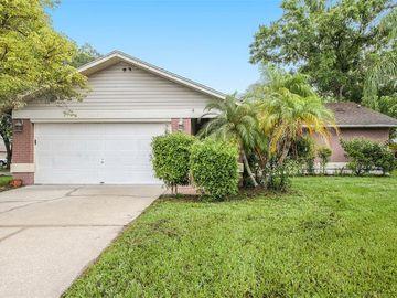 8805 FIELDFLOWER LANE, Tampa, FL, 33635,