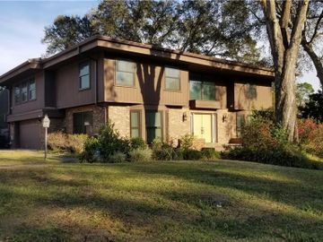 513 MONTROSE AVENUE, Temple Terrace, FL, 33617,