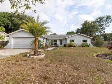 22302 RIVER ROCK DRIVE, Land O Lakes, FL, 34639,