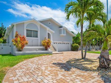 115 8TH STREET, Belleair Beach, FL, 33786,