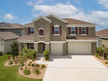 11803 SUNBURST MARBLE ROAD, Riverview, FL, 33579,