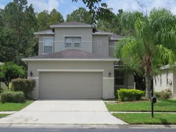 27020 STILLBROOK DRIVE, Wesley Chapel, FL, 33544,