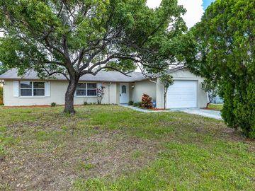 7419 ABINGTON AVENUE, New Port Richey, FL, 34655,