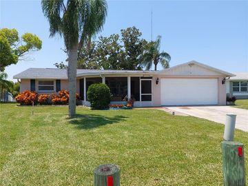 3240 JACKSON DRIVE, Holiday, FL, 34691,