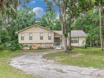 10420 CARLIN DRIVE, Brooksville, FL, 34601,