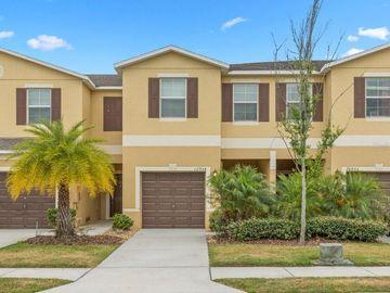 12954 UTOPIA GARDENS WAY, Riverview, FL, 33579,