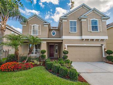 10920 OBSERVATORY WAY, Tampa, FL, 33647,