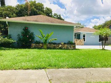 18413 SWAN LAKE DRIVE, Lutz, FL, 33549,