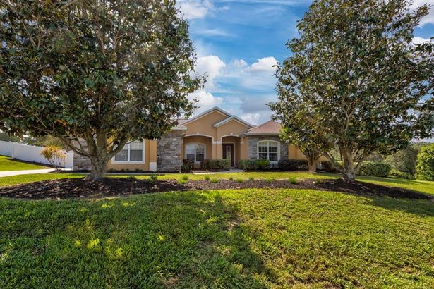 31330 SUNNY MEADOW COURT