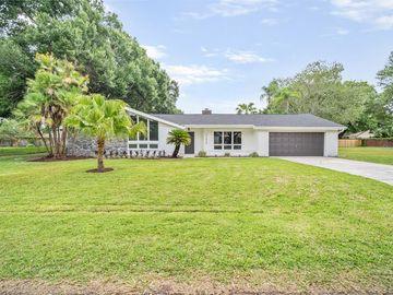 22436 SOUTHSHORE DRIVE, Land O Lakes, FL, 34639,