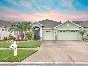 31330 ANNISTON DRIVE, Wesley Chapel, FL, 33543,