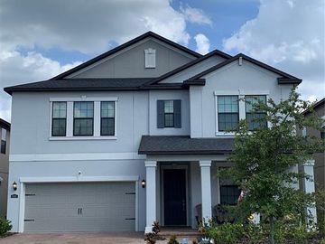 16305 HYDE MANOR DRIVE, Tampa, FL, 33647,
