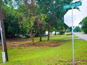 None MADISON STREET, Astatula, FL, 34705,