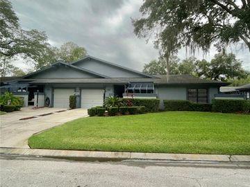 30 SUMMERWINDS LANE, Oldsmar, FL, 34677,