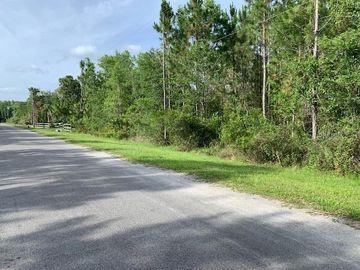 None CORONET AVENUE, Orlando, FL, 32833,