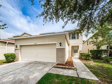 17548 QUEENSLAND STREET, Land O Lakes, FL, 34638,