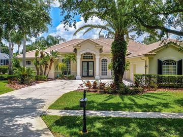 9226 HIGHLAND RIDGE WAY, Tampa, FL, 33647,