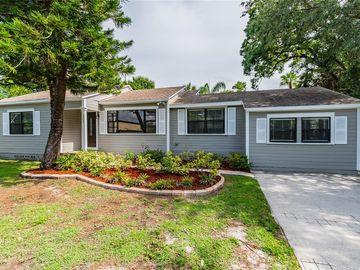 3709 W GRIFLOW STREET, Tampa, FL, 33629,