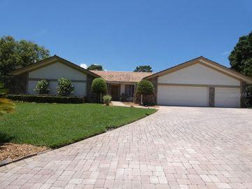 2906 MILL STREAM COURT, Clearwater, FL, 33761,