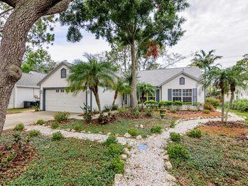 1632 COUNTRYWOOD STREET, Tarpon Springs, FL, 34689,