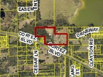 24325 DORSEY SMITH ROAD, Brooksville, FL, 34601,