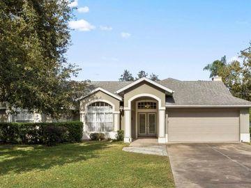 10139 SILVER BLUFF DRIVE, Leesburg, FL, 34788,