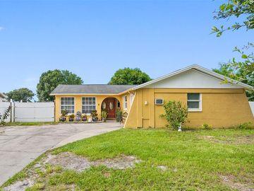 8231 DONALDSON DRIVE, Tampa, FL, 33615,