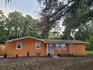 238 GRIFFIN VIEW DRIVE, Lady Lake, FL, 32159,