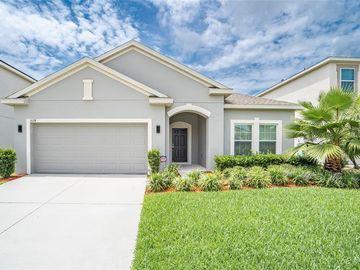 3124 HARDWOOD HAMMOCK DRIVE, Orlando, FL, 32824,
