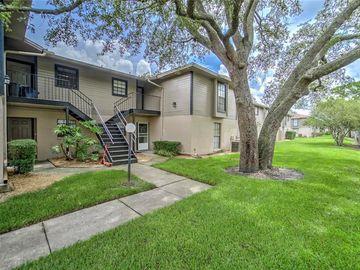 4007 ASHFORD GREEN PLACE #201, Tampa, FL, 33613,