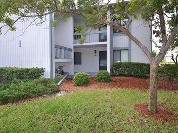 101 MARTHA LANE #4, Oldsmar, FL, 34677,