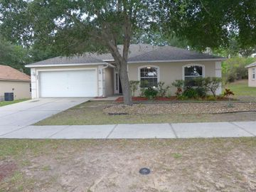 625 WILLOW RUN STREET, Minneola, FL, 34715,