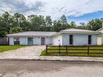 4848 STEEL DUST LANE, Lutz, FL, 33559,