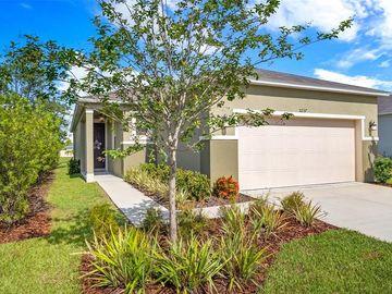 11237 GOLD COMPASS STREET, Gibsonton, FL, 33534,