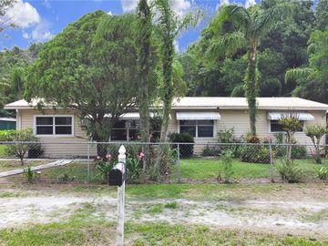 14819 N 20TH STREET, Lutz, FL, 33549,